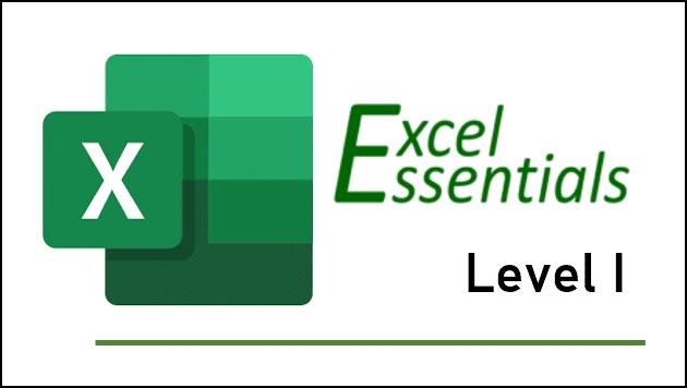 Excel Essentials Level 1 training