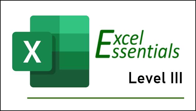 Excel Essentials Level 3 training
