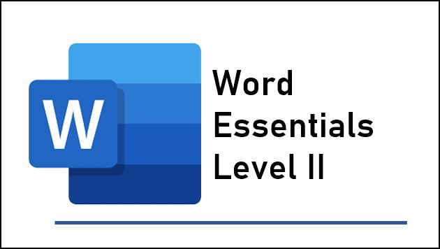 Word Essentials Level 2 training